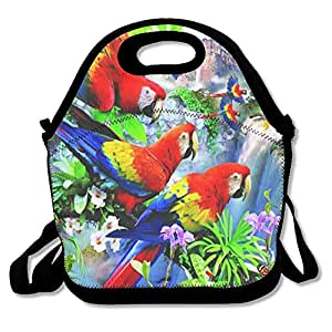 JH SPEED Lunch Tote Bag Bright Parrot Picnic Lunchbox Lunch Tote Insulated Reusable Container Organizer For, Adults, Kids