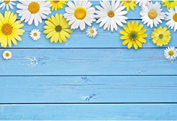 Blue Wooden Board and White Chrysanthemum Wedding Baby Photography Background Custom Photography Studio Photography Background