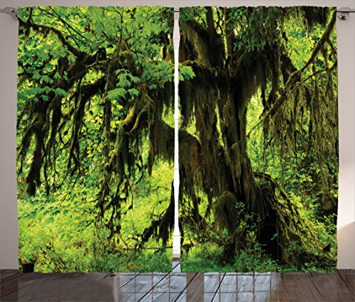 Rainforest Decorations Curtains by Ambesonne, Tree with Moss in the Jungle Natural Life Zen Home Decor Silent Plants Pattern, Living Room Bedroom Decor, 2 Panel Set, 108 W X 84 (Jungle Trees Backdrop)