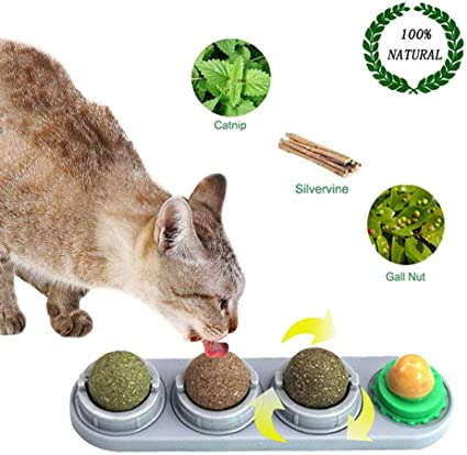 Amazon Com Pesandy Catnip Wall Ball Rotatable Cat Snack Ball