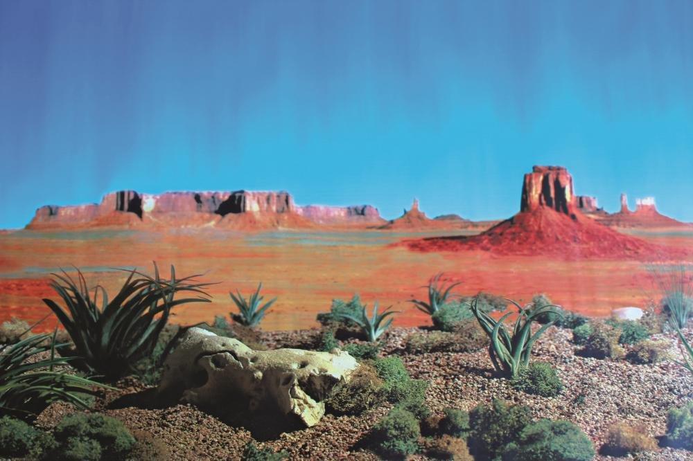 Trixie Mur arrière pour terrarium double face avec motif du désert/Steppe, 150x 60cm, Lot de 4 4011905763200