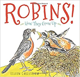 Robins! How they grow up - Eileen Christerow