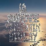 Benjamin Biolay// La Superbe (2cd)