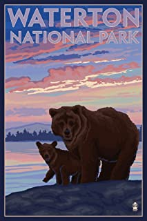 product image for Waterton National Park, Canada - Bear and Cub (24x36 Giclee Gallery Print, Wall Decor Travel Poster)