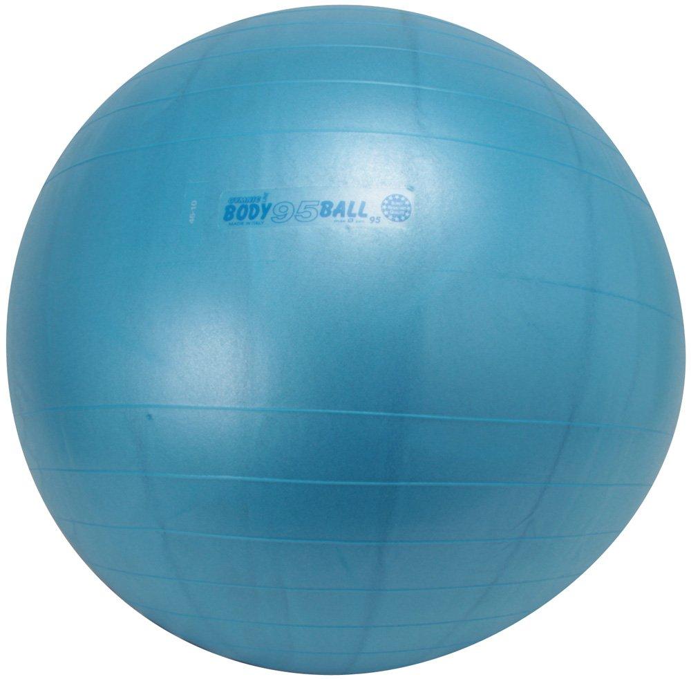 最新のデザイン ダンノ(DANNO) ギムニクボディボール 95cm 95cm D5919 ダンノ(DANNO) B001GAQKQQ B001GAQKQQ, ナラカワムラ:1f69b22c --- arianechie.dominiotemporario.com