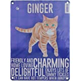 Vintage Style Metal Wall Sign Plaque Ginger Cat Lover - Ideal Gift