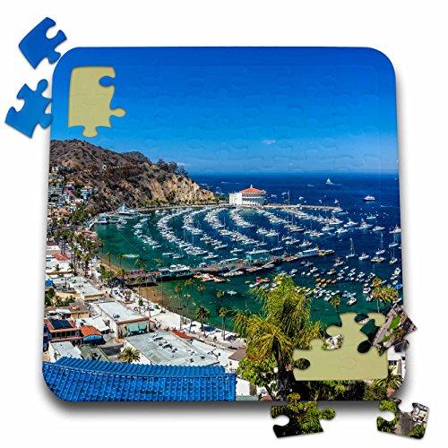 (Danita Delimont - California - A Panorama of Avalon on Catalina Island - 10x10 Inch Puzzle (pzl_205863_2))