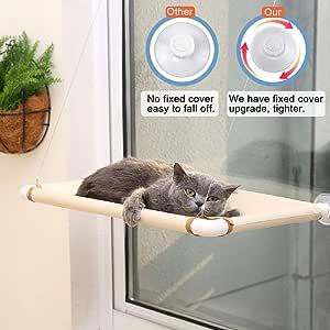 Amazon.com: ITEPT - Cama de sol para gatos, con ventana ...