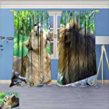 SCOCICI1588 Room Darkening Rod Pocket Window Curtains, The animales lion, Set of Two Panels, W52'' x L96'' Pair