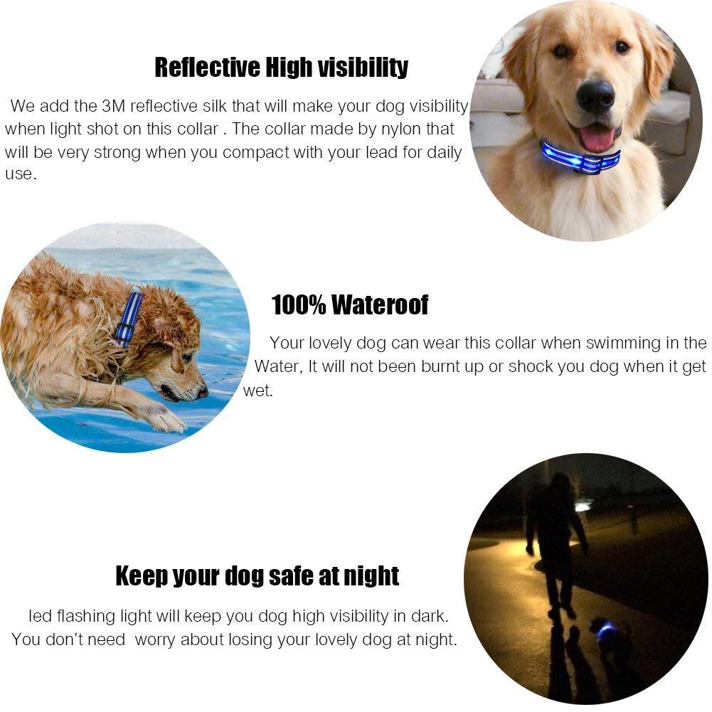 Led Lighted Up Dog Collar Flashing 100/% Waterproof USB Rechargeable Pet Dog Safety Collar Glow in The Dark Light-up Neck Loop by MASBRILL S, Blue-White