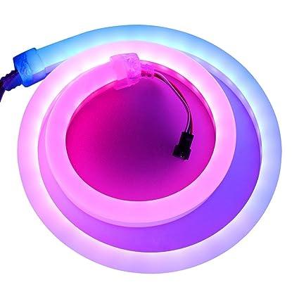 Amazon.com: xunata cuerda de neón LED luz, 60 LEDs/M ...