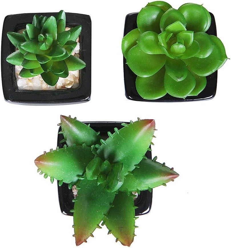 lot de 3 Plante en Plastique Mini-jardini/ère artificielle succulente Mini-pots en faux pots carr/és en c/éramique noire