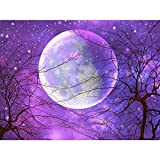 5D Diamond Painting Kit, Full Round Drill Kit Rhinestone Moon Diamond Art Painting for Adults Kids, Perfect for Home Wall Decor (16x12 Inches)