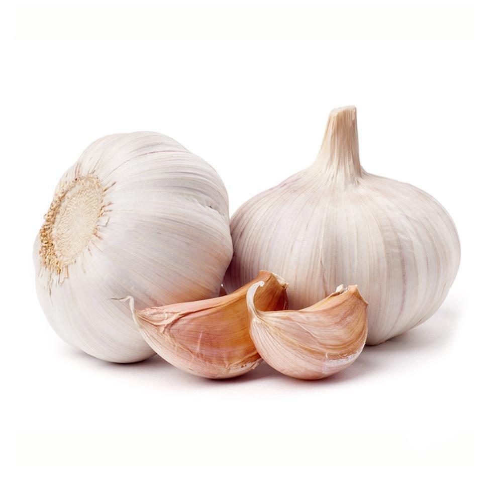 200pcs Giant Garlic Seeds Heirloom Organic Bulb Seed Home Garden Vegetable Herb Star Eleven