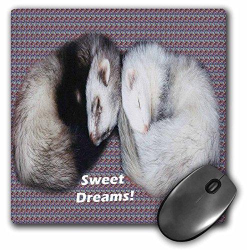 (3dRose LLC 8 x 8 x 0.25 Inches Sleeping Ferrets Mouse Pad (mp_17286_1))