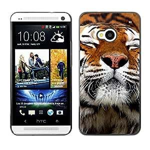 Caucho caso de Shell duro de la cubierta de accesorios de protección BY RAYDREAMMM - HTC One M7 - Happy Tiger Fur Orange Animal Cute