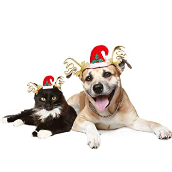 Perro gato mascota Tocado de navidad Cascos para mascotas Disfraz para gatos Accesorios para el cabello