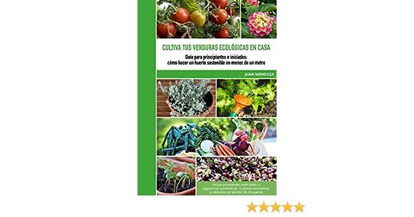 Cultiva tus verduras ecológicas en casa: Guía para principiantes e ...