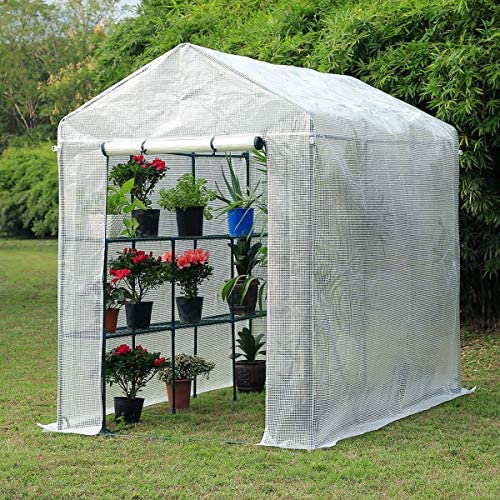 Strong Camel Indoor Outdoor Mini Walk-in Greenhouse Portable Plant Gardening Greenhouse 56 X56 X76.7