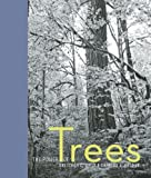 img - for The Power of Trees book / textbook / text book