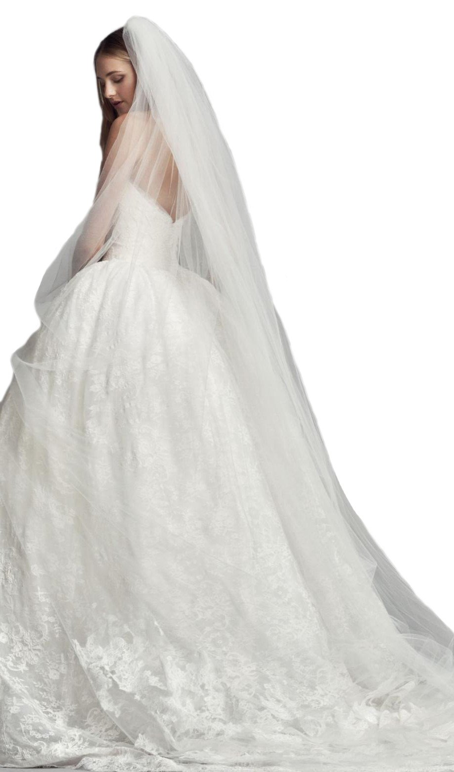 Passat Pale Ivory Single-Tier 3M Cathedral Wedding Veil with Lace Appliques DB113