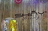 ShinyBeauty Foil Fringe Silver-9FTX8FT Metalic Fringe Curtain Tinsel Photo Backdrop