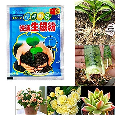 COPYLOVE Rooting Powder Agent, Rapid Rooting Powder Agent for Fruit Tree Cutting Flower transplanting (30PCS) : Garden & Outdoor