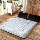 Thick warm tatami mattress in winter student dormitory bed mat ground floor sleeping pad-F 120x200cm(47x79inch)