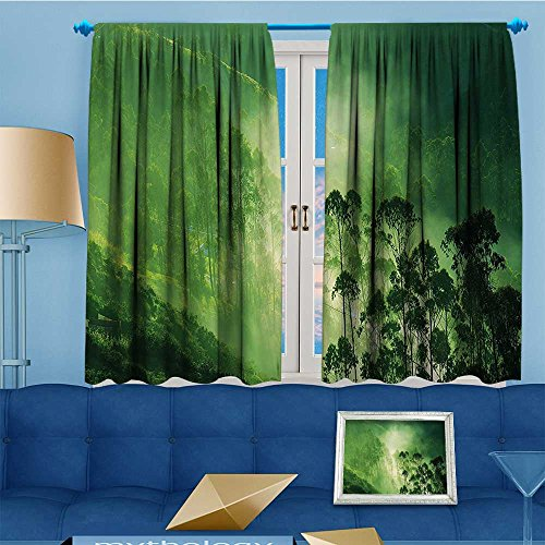 (Mikihome Alta Pine Forest Design Collection, Hazy Fall Fog Timberland on Sierra Nevada Art ES Green,Living Kids Girls Room Curtain, 63