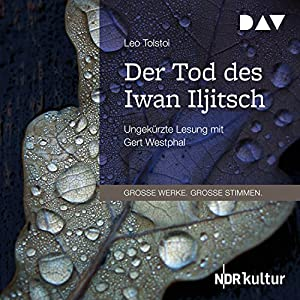 Der Tod des Iwan Iljitsch Audiobook