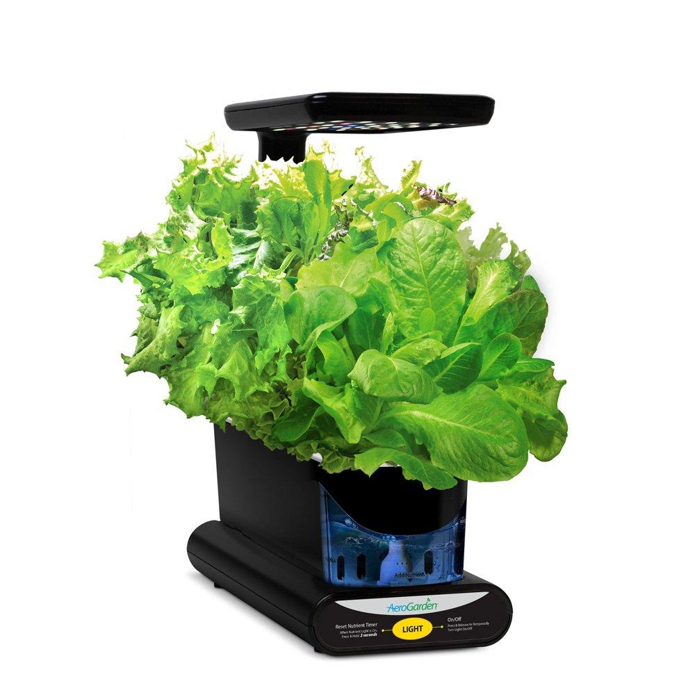 Amazoncom Miracle Gro AeroGarden Sprout LED with Gourmet Herb