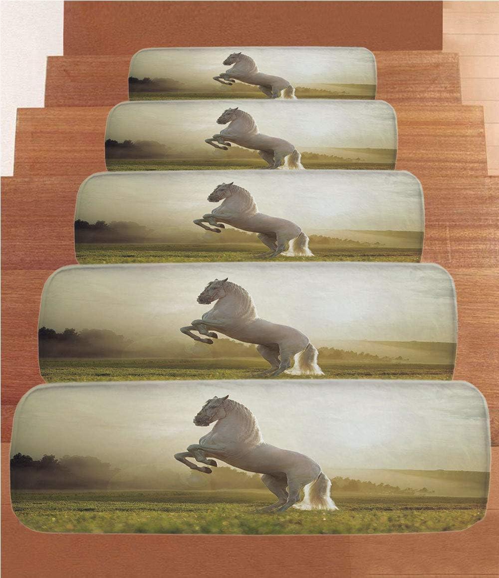SoSung - Juego de 5 Alfombrillas de Forro Polar para Escalera, diseño de Mujer afroamericana con Tacones Altos y patrón de Fondo de Rayas, 21,6 x 70 cm, Color Negro: Amazon.es: Juguetes y juegos
