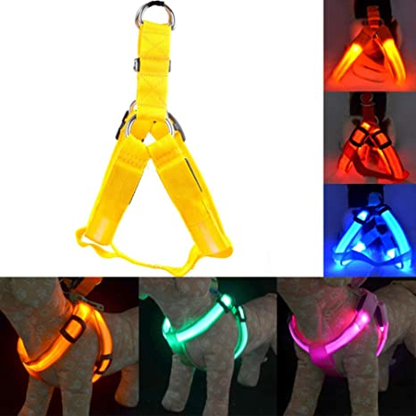 MYNZD Correa de Perro Recargable LED Nylon Pet Dog Arnés para ...