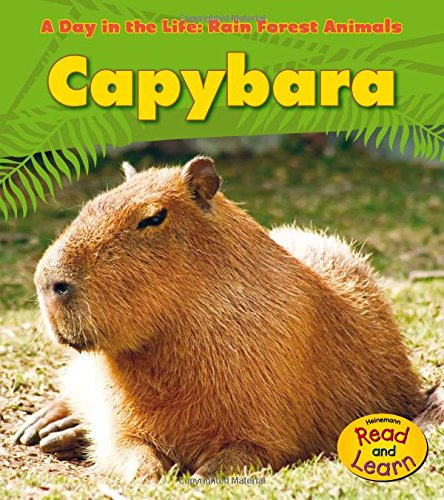 Capybara (A Day in the Life: Rain Forest Animals)