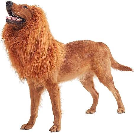 Rhww LeóN Melena Pelo Peluca para Perro, Mascota Perro LeóN Melena Disfraz, Ajustable Gracioso Festividad De Todos Los Santos LeóN Disfraz: Amazon.es: Hogar