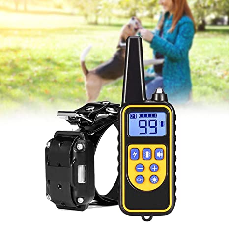 Amazon com : KANING Dog Training Collar, 2624ft Remote IP6X
