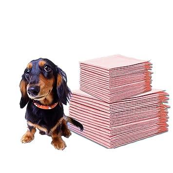 Tipos de pañales para perros