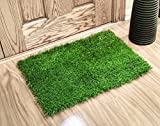 Artificial Grass Doormat (24X18 Inches) - Welcome Mat For Entrance Way - Outdoors and Indoors
