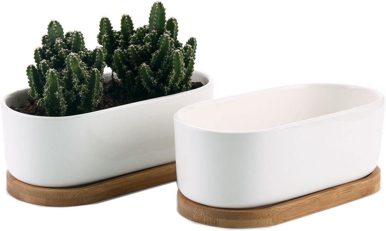 T4U Conjunto de 2 Ceramica Blanca Moderno diseño Oval Cerámicos Planta Maceta Suculento Cactus Planta Maceta Planta Contenedor Vivero Maceta Macetas de jardín Macetas Envase