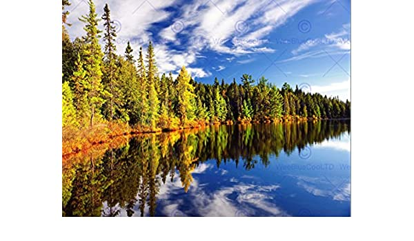 FOREST REFLECTING LAKE SYMMETRY PHOTO ART PRINT POSTER PICTURE BMP697B