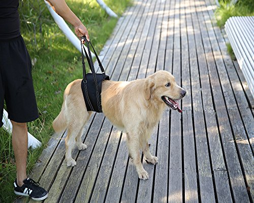 Mihqy Dog Support & Rehabilitation Lift Harnesses – Padded Dog Slings with Integrated Leash for Helping Old, Disabled…
