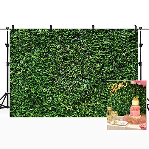 Riyidecor Green Lawn Wall Backdrop Nature Grass Photography Background Fresh Green and Black Shadow 7x5ft Decoration Celebration Props Party Photo Shoot Backdrop Fabric Cloth