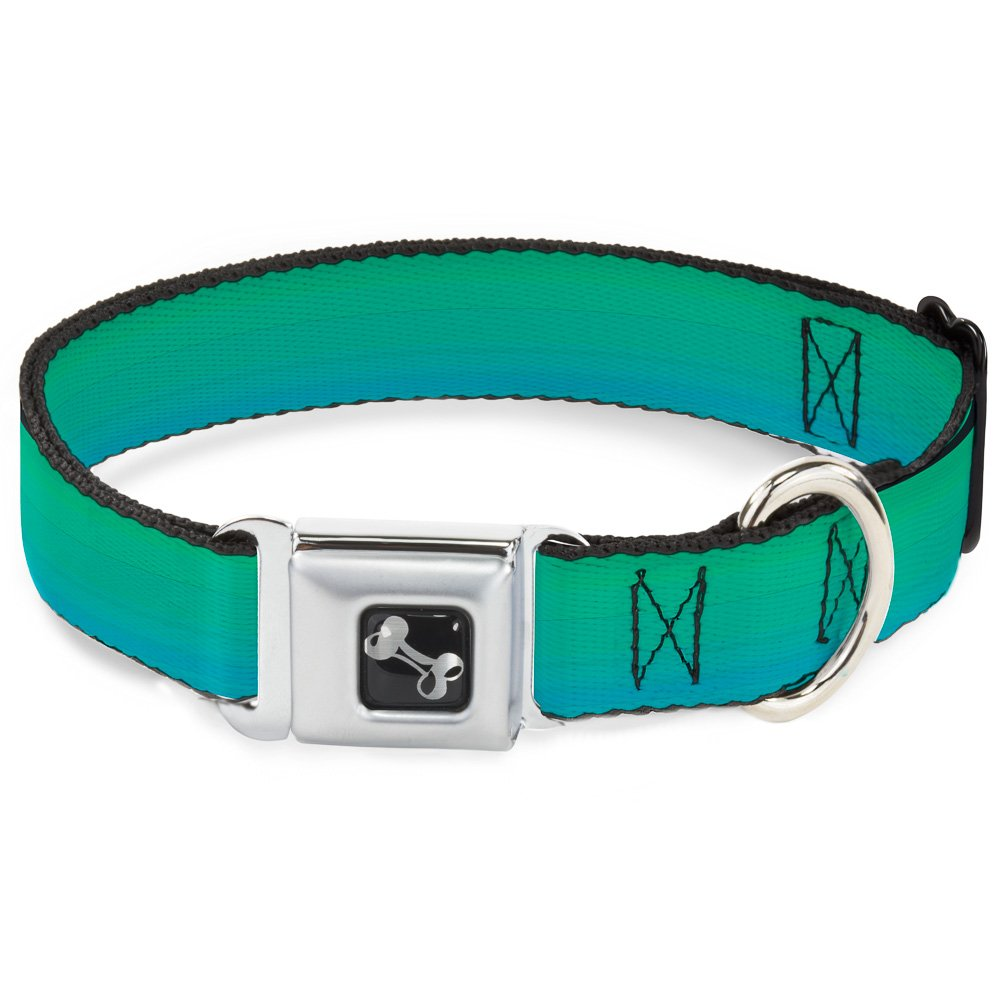 Buckle-Down Seatbelt Buckle Dog Collar Teal Ombre 1  Wide Fits 9-15  Neck Small