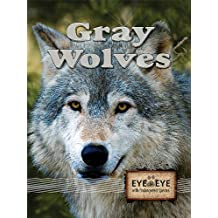Gray Wolves (Eye to Eye With Endangered Species)