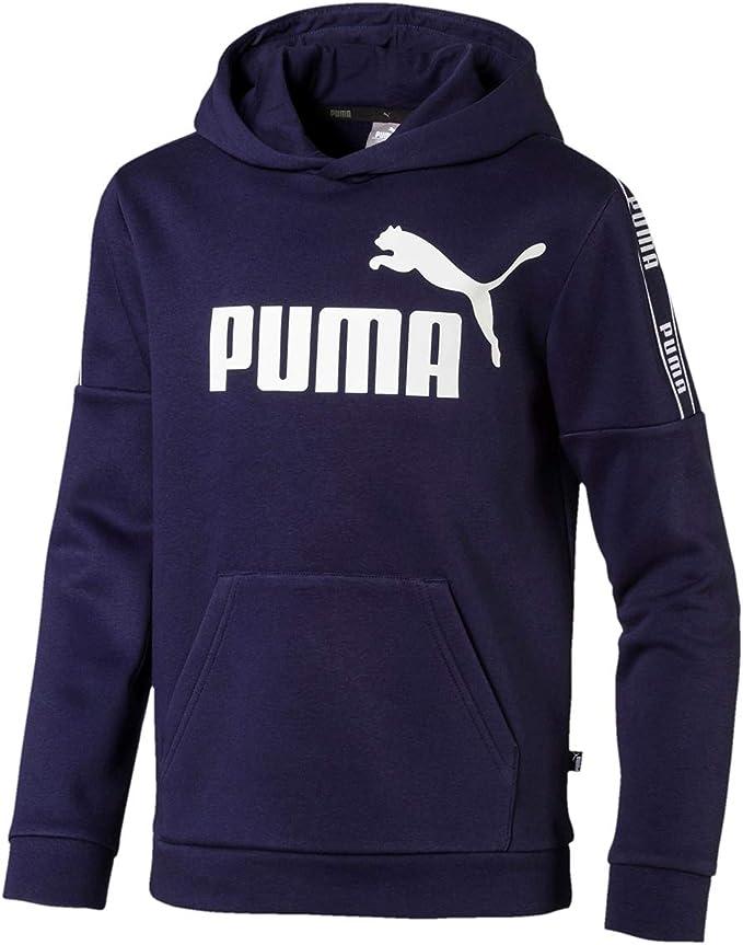PUMA Jungen Amplified Hoody FL B Pullover