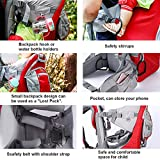Baby Toddler Hiking Backpack Carrier Camping Child