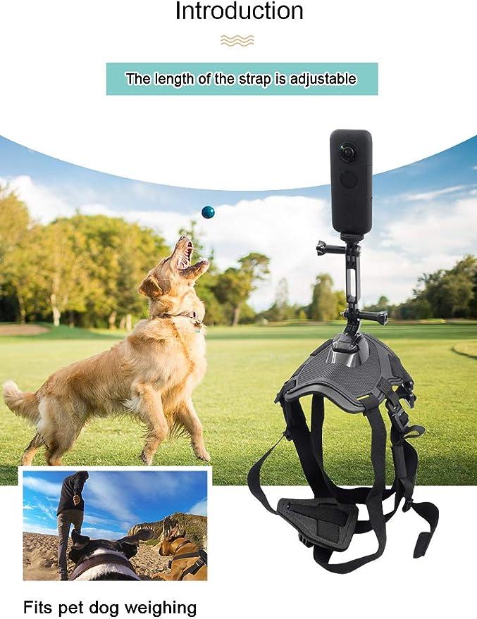 Honbobo Pet Dog Harness Chest Strap Belt Mount for Insta360 ONE X//EVO//Gopro Action Sports
