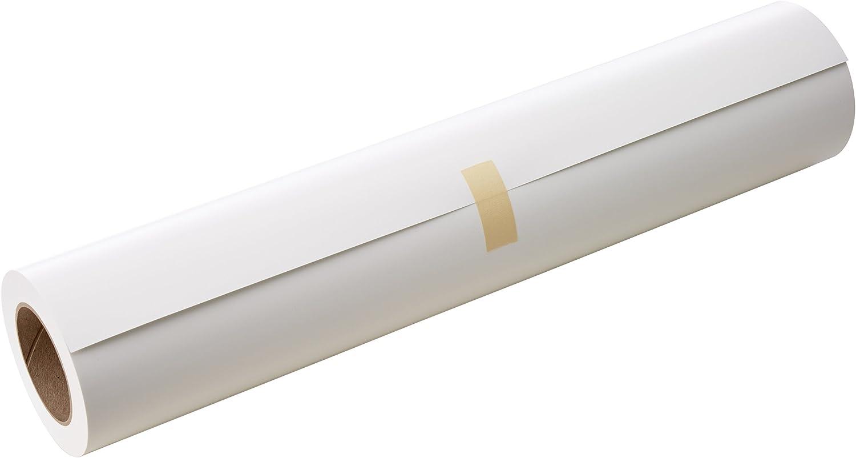Epson Rollo de Commercial Proofing Paper, 24