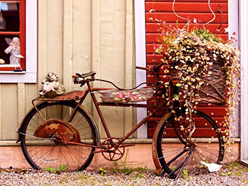 Cms Vintage Bike Bicycle Flower Basket French Fine Art Print Poster Home Decor Picture