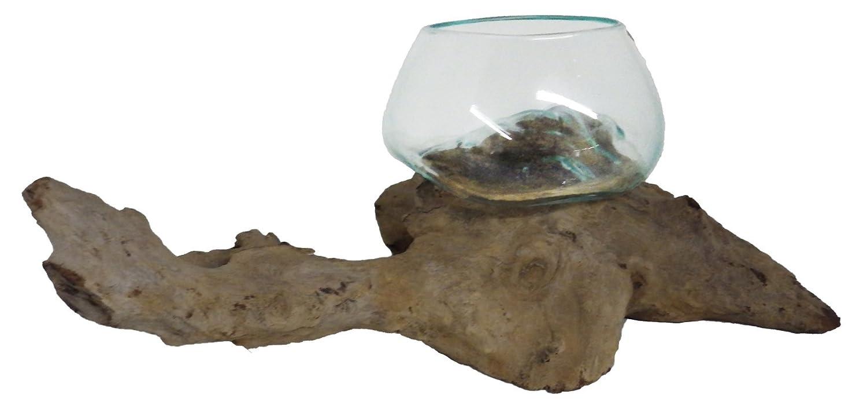 Glas 2 auf Teakwurzelholz 2834 D ca.12 cm mundgeblasen Hingucker Geschenkidee